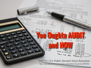 You oughta audit and how